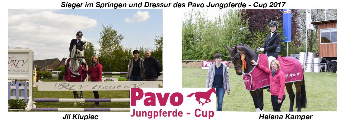 Pavo Jungpferde - Cup 2017